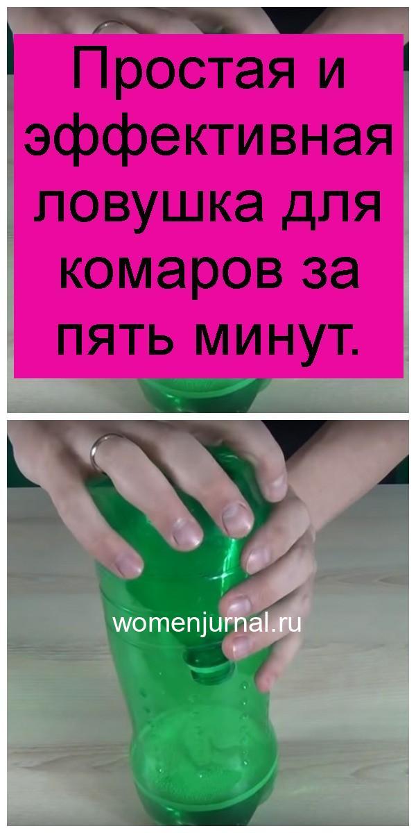 Простая и эффективная ловушка для комаров за пять минут 4