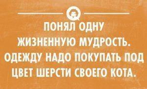0_f137c_358669dd_orig-300x181-8879868