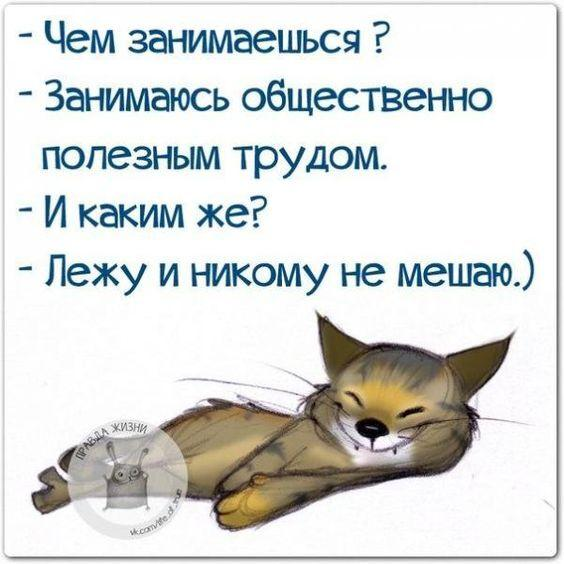 7337991829611f878b245cbb69d66e31-8458468
