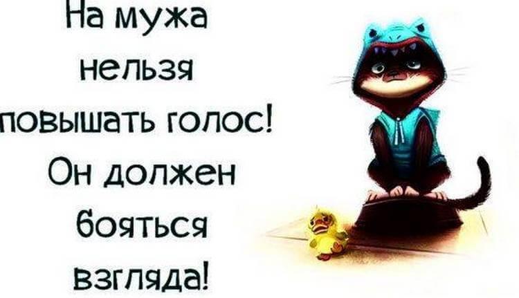 7ba452b34d0c55a91d8f213850faea75-2-3287207