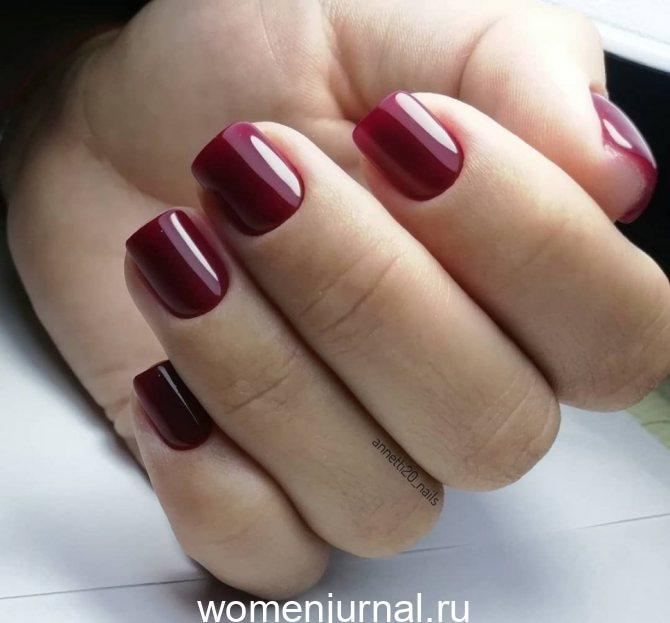 odnotonnyy_manikyur_51-1136676